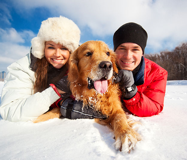 Couple with dog in snow